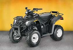 Квадроцикл Arctic Cat 300