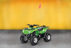 Квадроцикл Arctic Cat 90