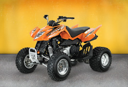 Квадроцикл Arctic Cat DVX 300