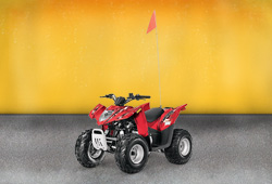 Квадроцикл Arctic Cat DVX 90