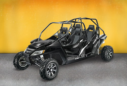 Квадроцикл Arctic Cat Wildcat 4 1000