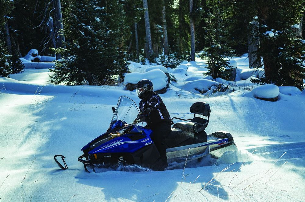 Снегоходы для глубокого снега – особенности, какой лучше выбрать