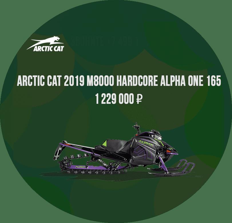 alpha m8000 165 arctic cat